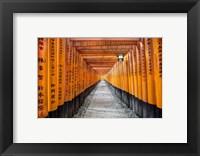 Framed Fushimi Inari Taisha Shrine Kyoto