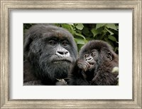 Framed Mother and Baby