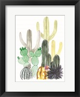 Framed Cacti Party