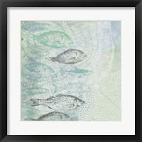 Framed Swimming Fish