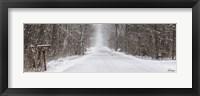 Framed Winter's Mail