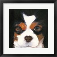 Framed Gertie II