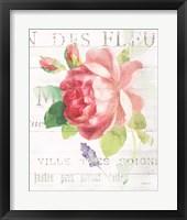 Framed Maison des Fleurs VIII