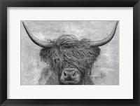 Framed Norwegian Bison