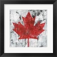 Framed Canada Maple Leaf I