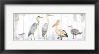 Framed Birds of the Coast Rustic Panel