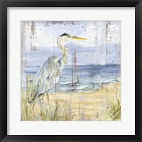 Framed Birds of the Coast Rustic I