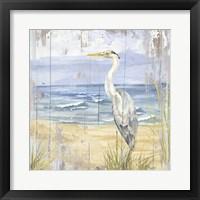 Framed Birds of the Coast Rustic II