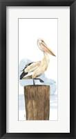 Framed Birds of the Coast Panel III