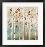 Framed Fall Birch Trees
