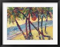 Framed Life in Tropics