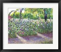Framed Iris in Bloom