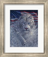 Framed White Tiger America