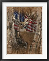 Framed Whitetail Buck America