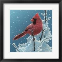 Framed Cardinal - Cherry on Top