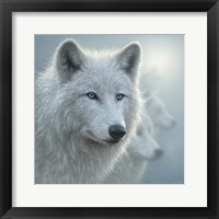 Framed Arctic Wolves - Whiteout