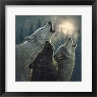 Framed Howling Wolves - In Harmony