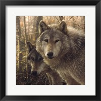 Framed Wolves - Woodland Companions