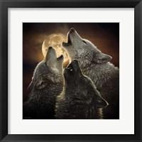 Framed Wolf Trinity