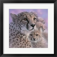 Framed Cheetah Mother and Cubs - Mother's Love - Square