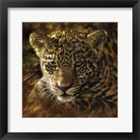 Framed Jaguar Cub on Bark