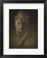 Framed Leopard - Savage