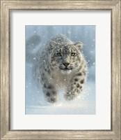 Framed Snow Leopard - Snow Ghost - Vertical