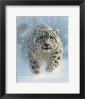 Framed Snow Leopard - Snow Ghost - Vertical