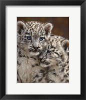 Framed Snow Leopard Cubs - Playmates