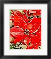 Framed Poinsettia Red