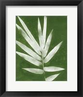 Framed Green Spa Bamboo II