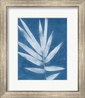 Framed Spa Bamboo II