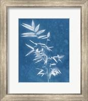 Framed Spa Bamboo III