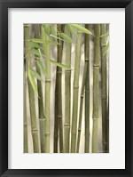Framed Backlit Bamboo II