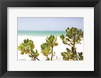 Framed Sand Succulents II