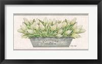 Framed Flowers & Garden White Tulips