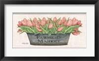 Framed Farmer's Market Blush Tulips