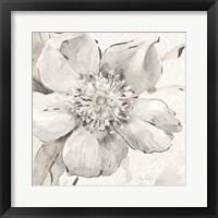 Framed Indigold VI Gray