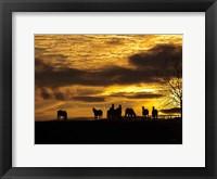 Framed Horses at Sunset