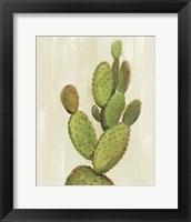 Framed Front Yard Cactus I
