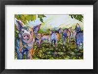 Framed Pig Tales