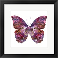 Framed Cinematic Butterfly
