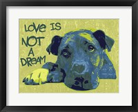 Framed Love Is Not A Dream