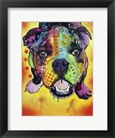Framed Baby Bulldog