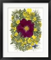 Framed Flower Fantasy 2