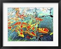 Framed Koi Carp Abstraction