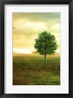 Framed Lone Green Tree