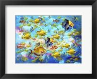 Framed Fish World