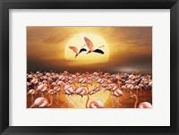 Framed Flamingo Land 2D