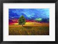 Framed Lone Tree 2D